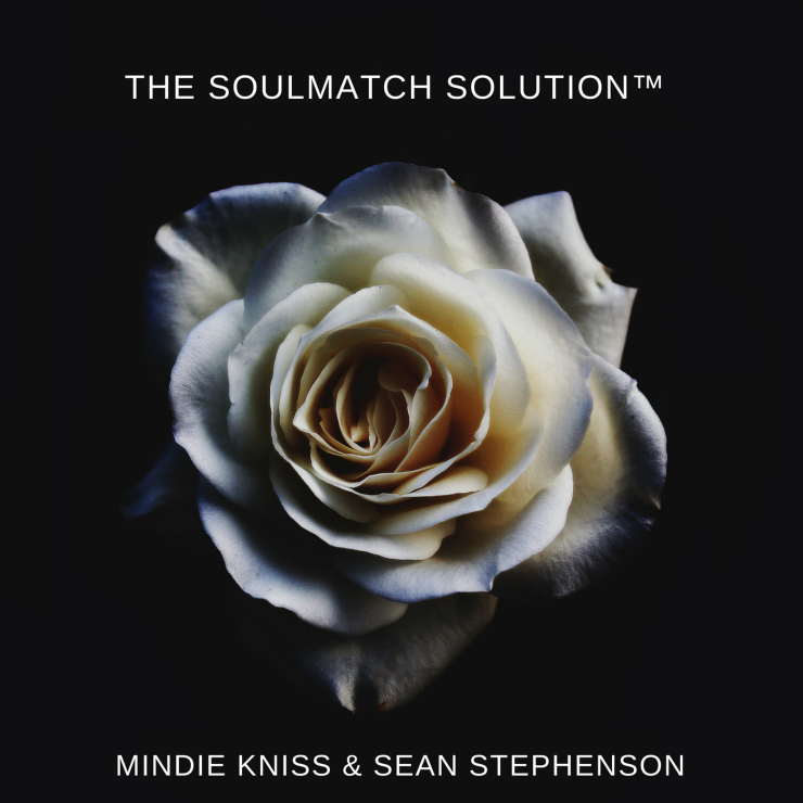 the soulmatch solution™ 1(1)